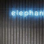 *Off-White(オフホワイト)MARCELO BURLON(マルセロバーロン)等の京都取扱店、elephants(エレファンツ)がオープン*